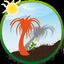 L'ombre du palmier  Permaculture