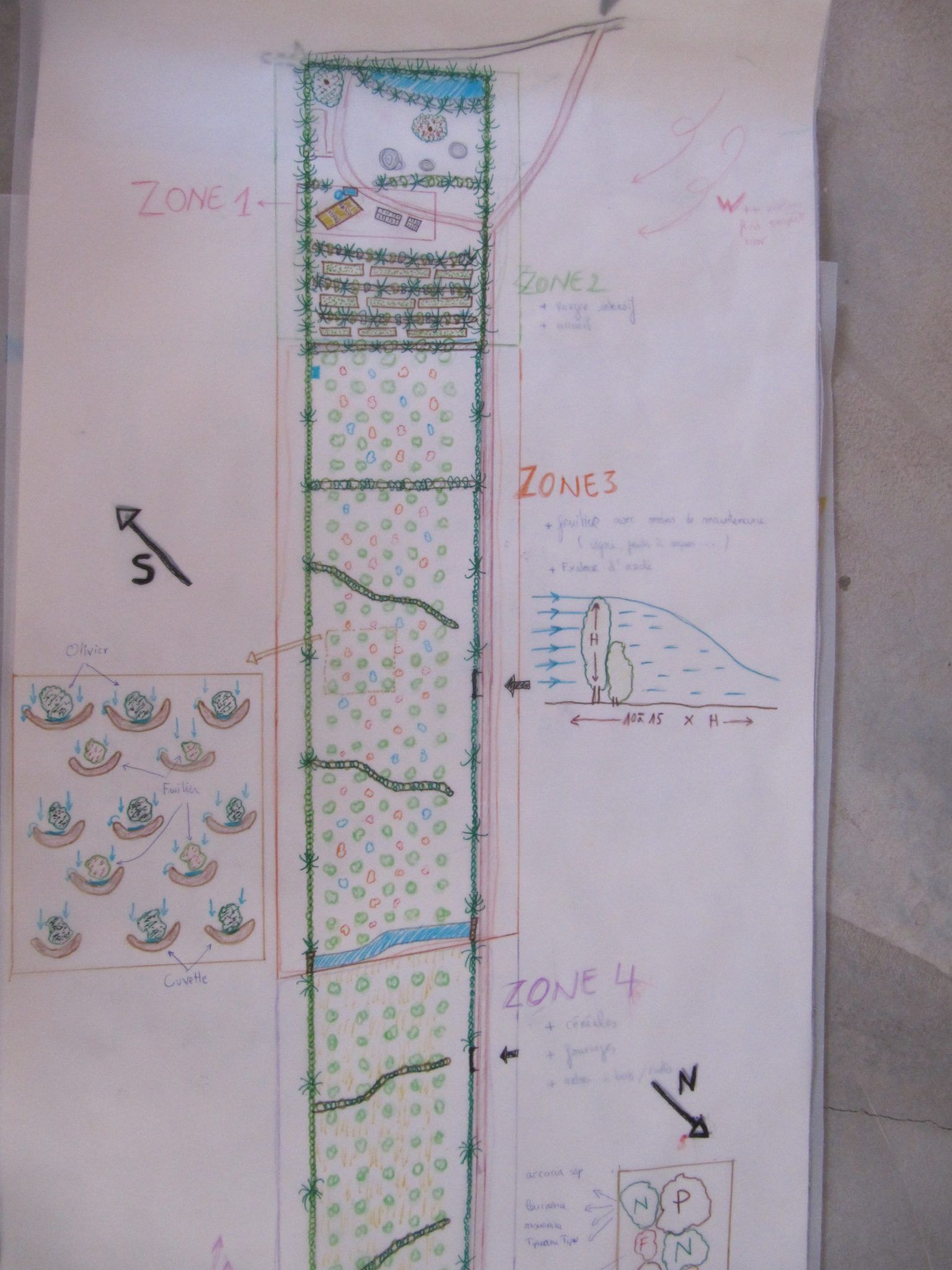 Design de la ferme L'ombre du palmier, centre de permaculture en Tunisie