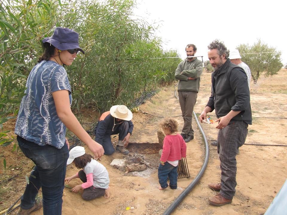 Pique-nique convivial avec les volontaires wwoofeurs à L'ombre du palmier