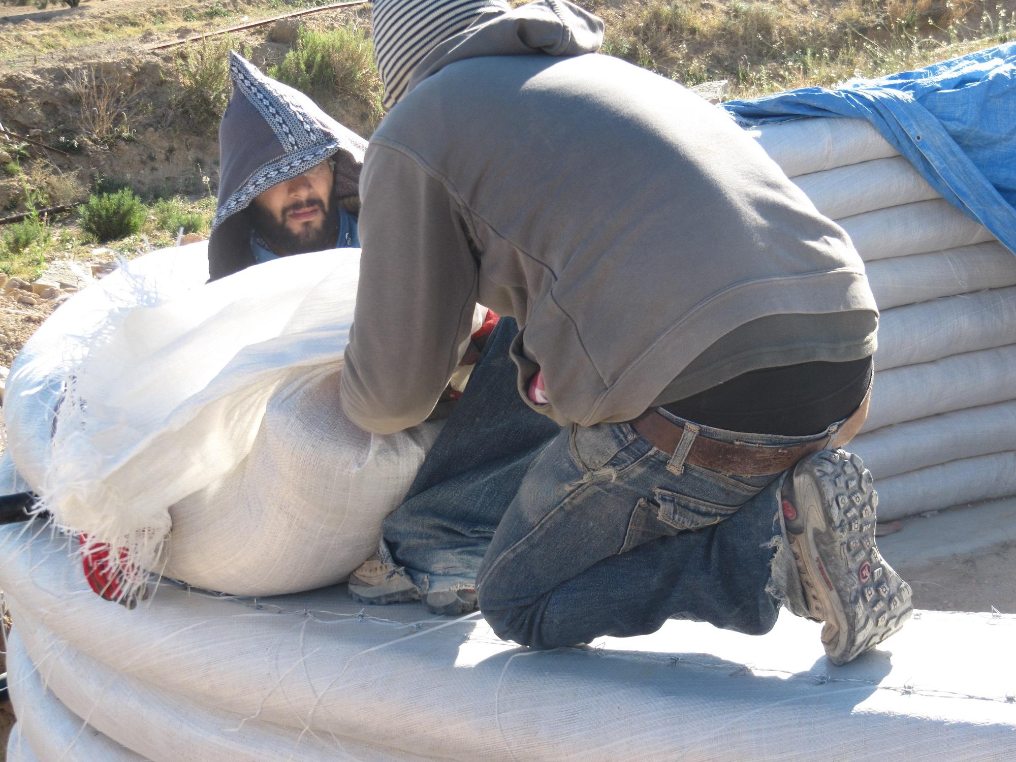 Nos chevaux, L'ombre du palmier, centre de permaculture en Tunisie