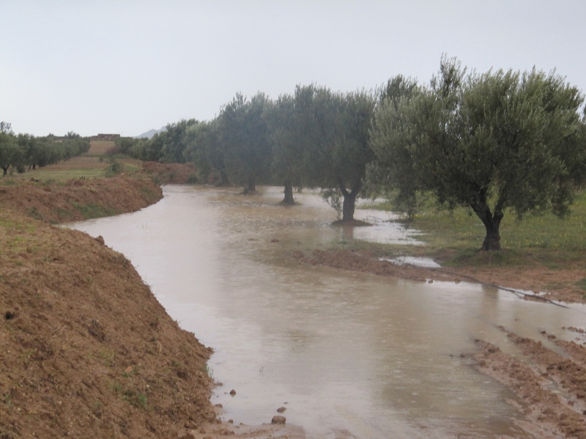 Rétention de l'eau et du sol
