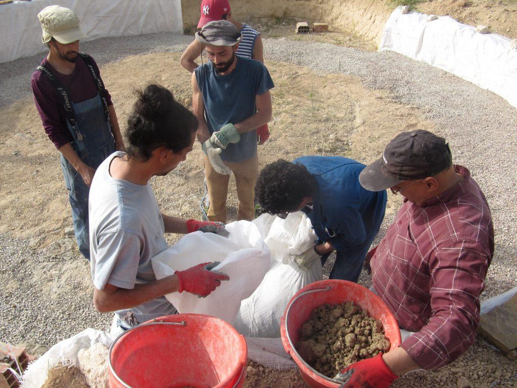 Volontariat ecodome L'ombre du palmier