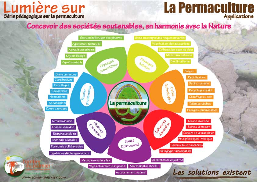 Permaculture: définitions, principes, design, applications -- L'ombre du palmier