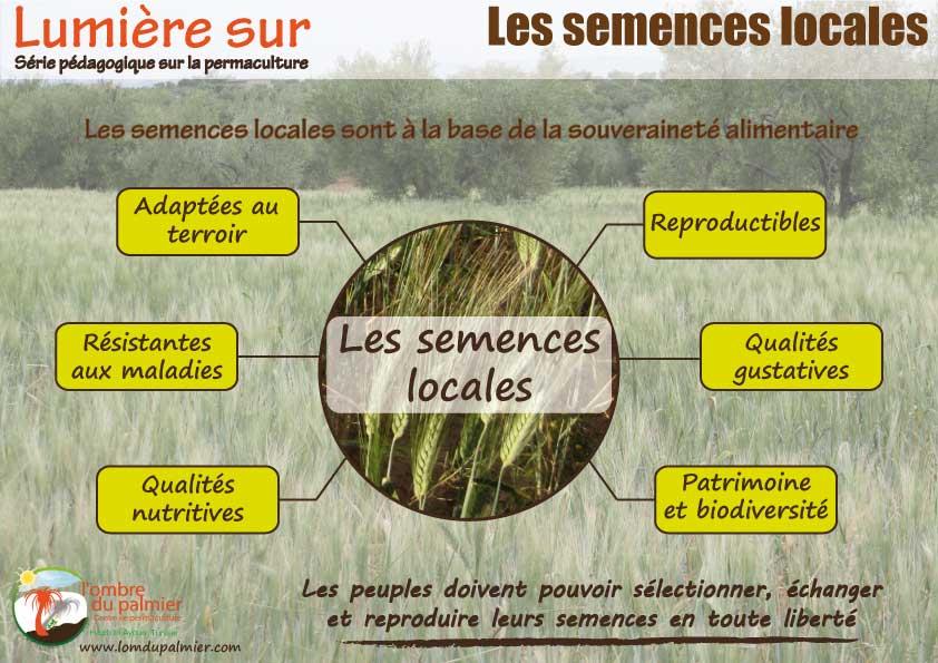Affiche permaculture les semences locales