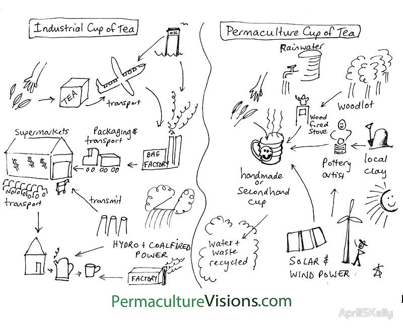 Production d\\\\\\\'une tasse de thé conventionnelle et en permaculture