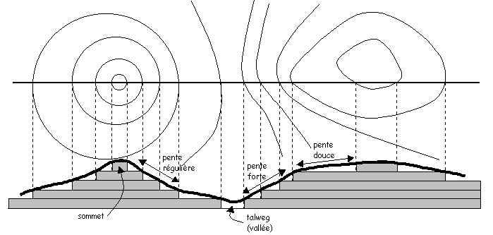 courbe de niveau permaculture
