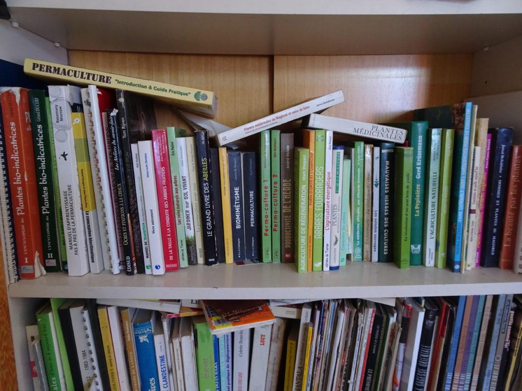 Bibliothèque de L'ombre du palmier, permaculture