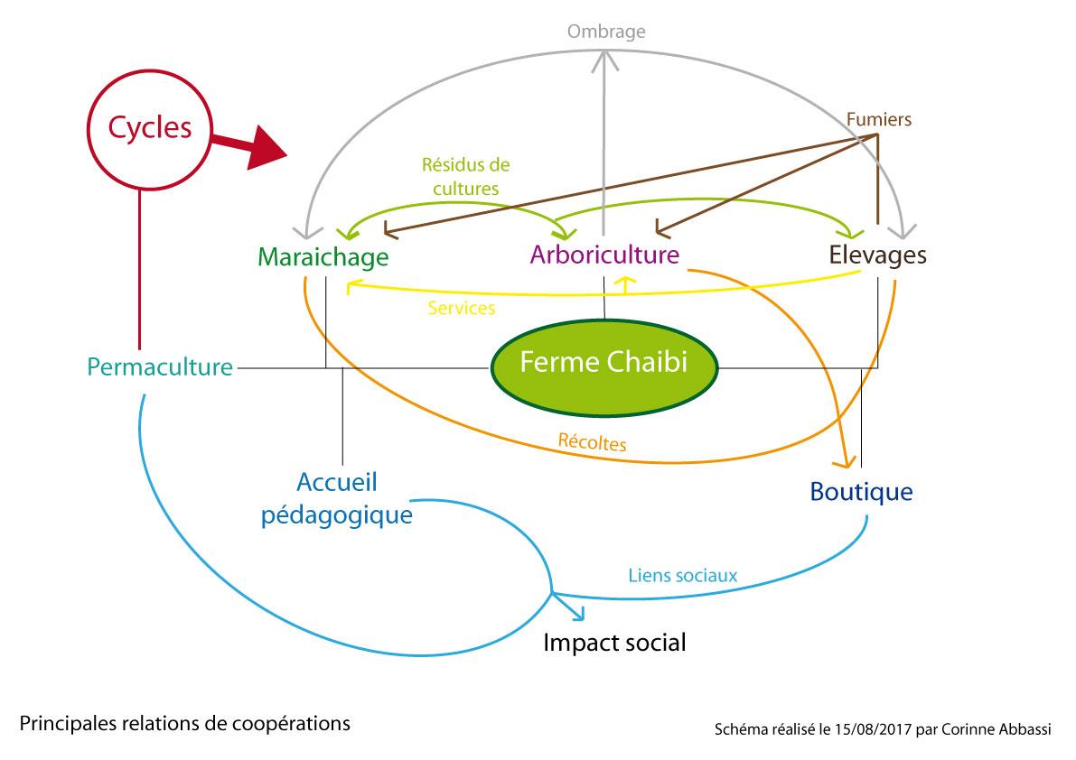 Design permaculture Utique